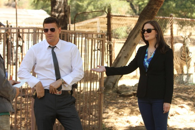 BONES: 'The Tiger in the Tale'