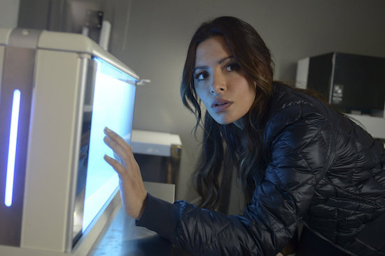 The Rookie Sarah Shahi